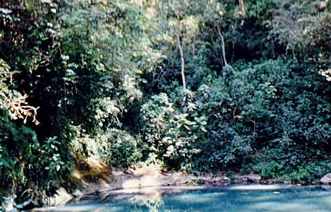 hot springs in awash ethiopia