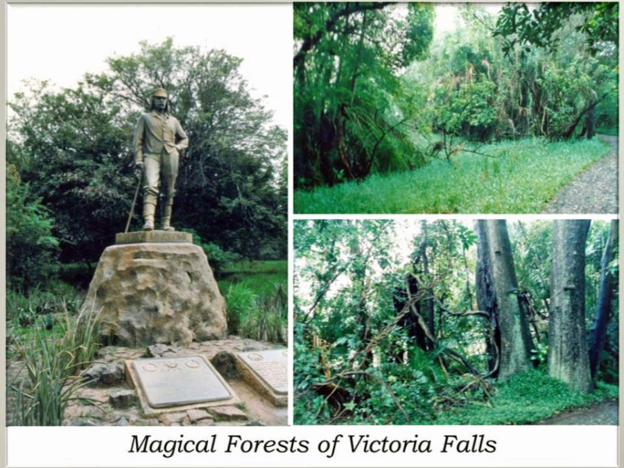 post card from Victoria Falls