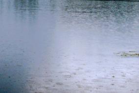 Water - rain
