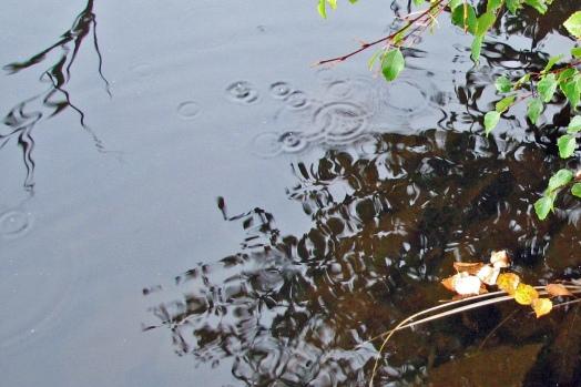 Water - lake
