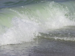 Water - wave