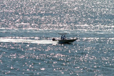 Slow boat to paradise by Tiny