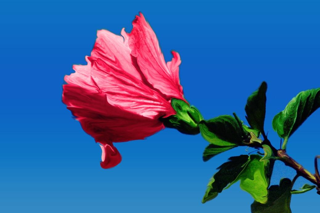 easter flower ed