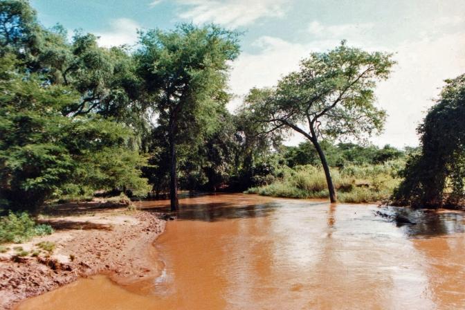 Luangwa River View Zambia