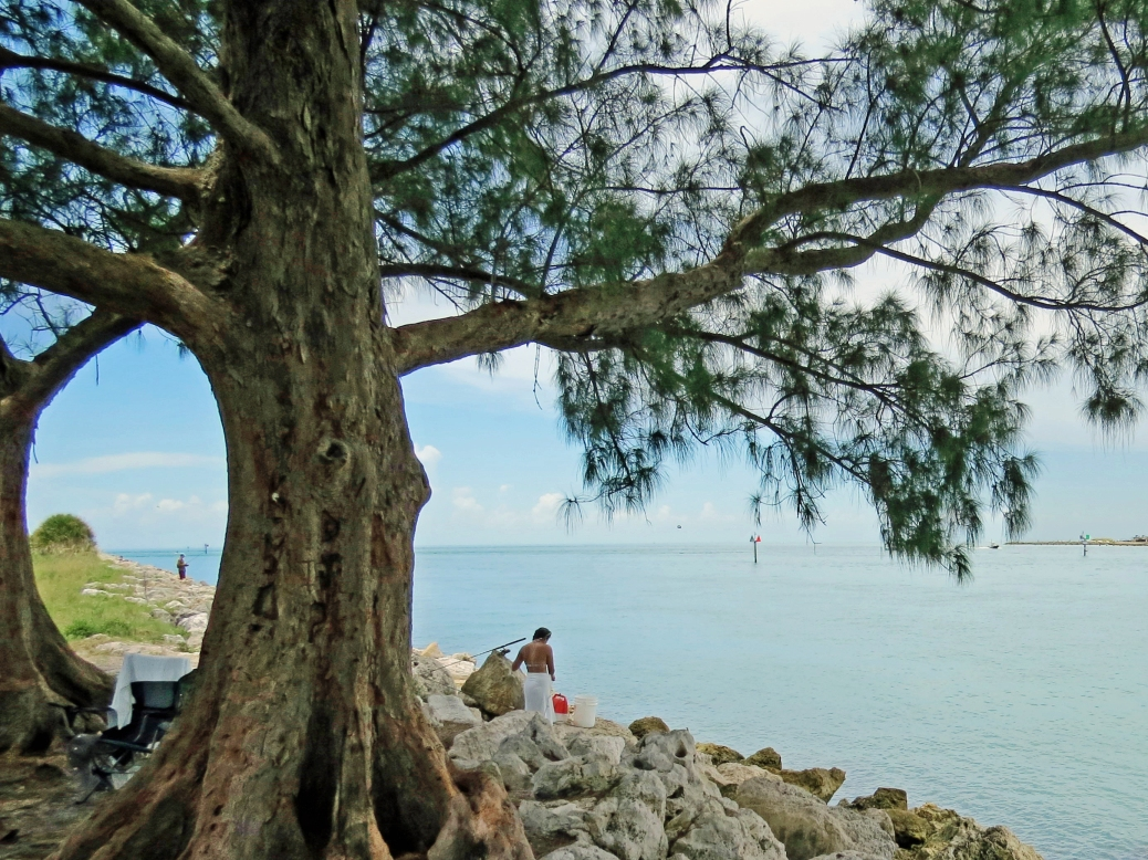 sand Key Park Clearwater