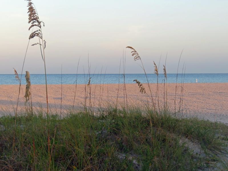 on the beach at sunrise