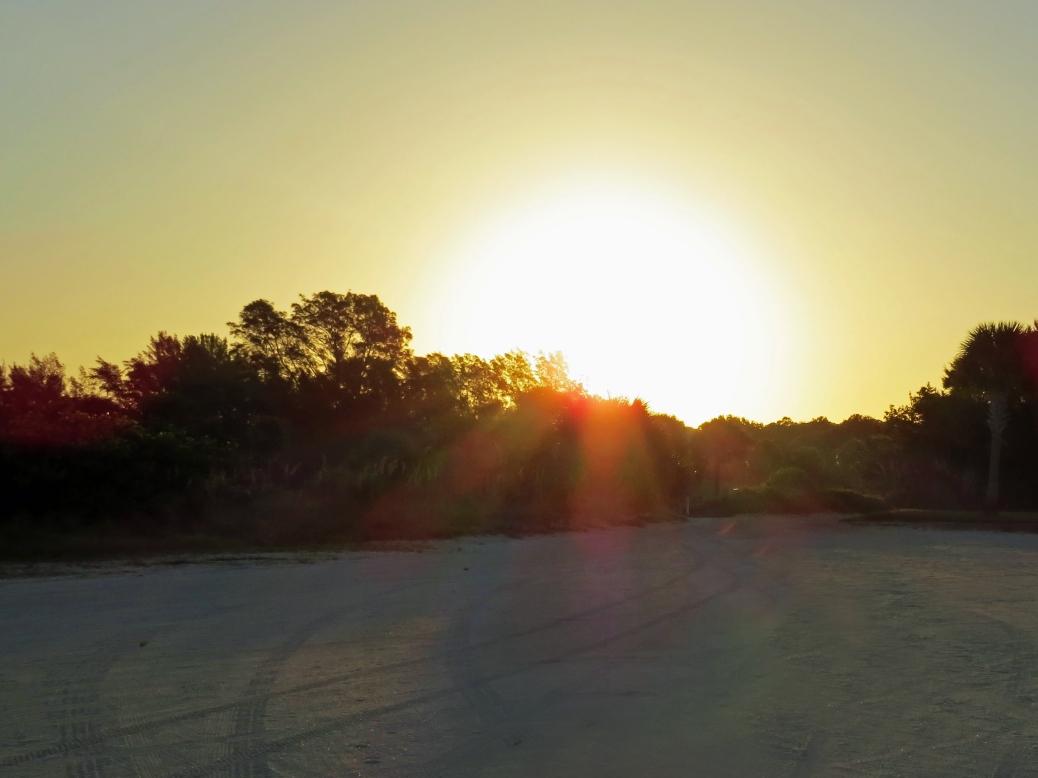 sunrise beach and reserve 2