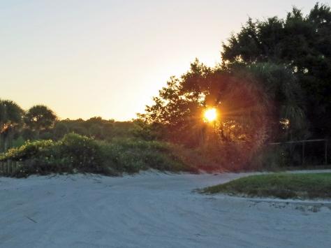 sunrise park 2