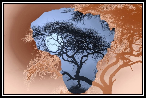 Africa Moon (2)