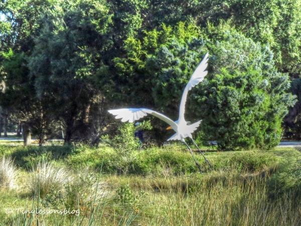 great egret flying 3 Nov 29