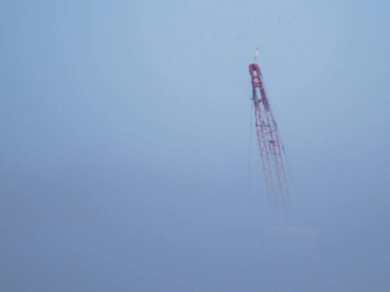 crane in the fog