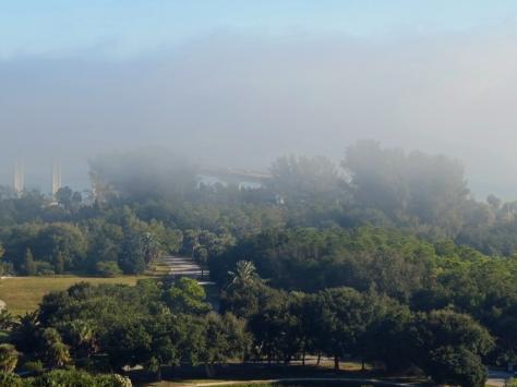 nature reserve  Sand key park in fog