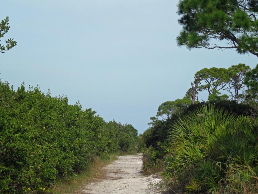 HM pelican trail 2