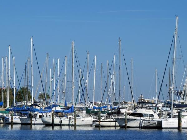 sailing boats in st. petersburg marina