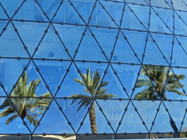 surreal palm reflections on windows of Dali museum