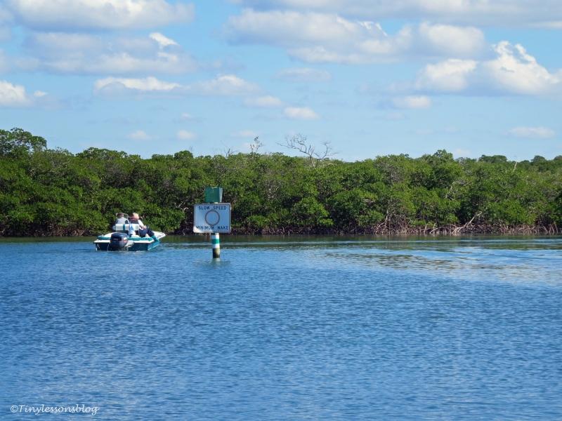 Caladesi island approaching the marina