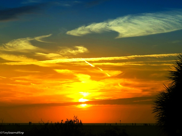 Mexican Gulf sunset Sand key beach clearwater