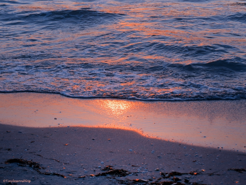water's edge at sunset Sand kay Florida