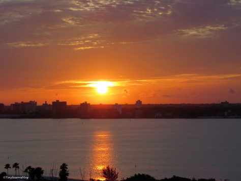 sunrise over the bay Sand Key Clearwater Florida