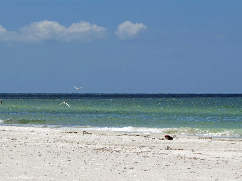 Gulf beach at Indian Rocks, Florida