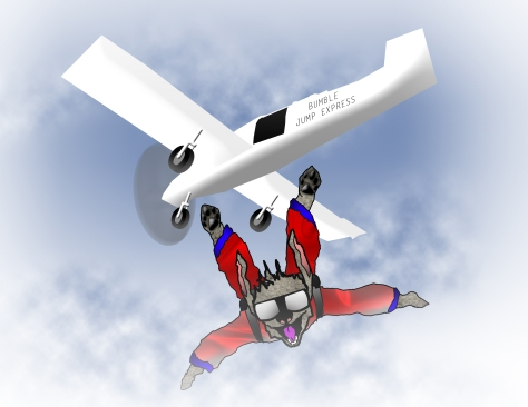 Bumble Skydiving BG