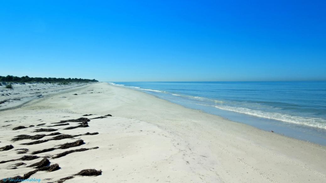 caladesi island beach MU
