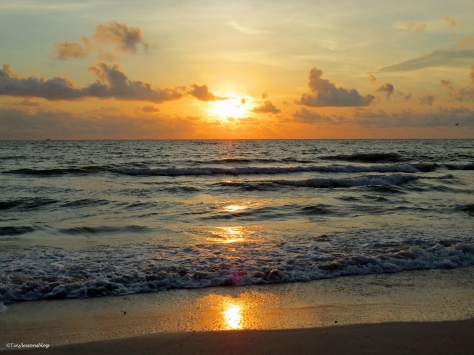 Sunset on the Gulf Sand Key Clearwater Florida