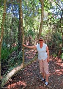 Hiking in North FL
