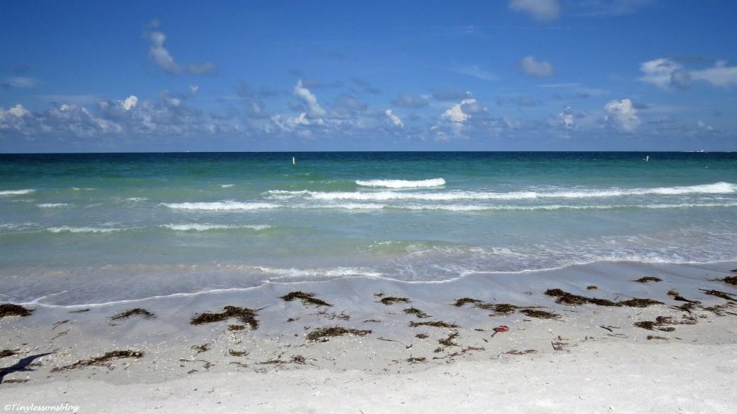 summer beach after the rains