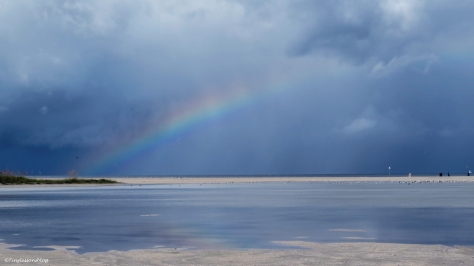 rainbow over the ocean Sand Key Clearwater Florida