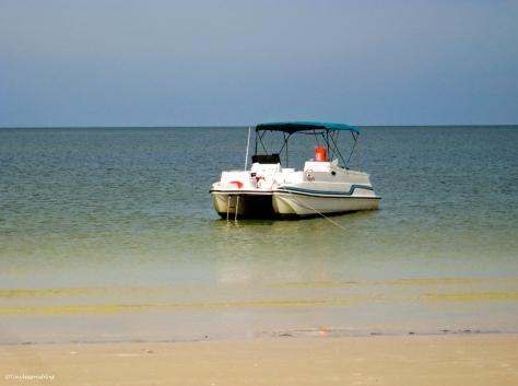 3 rooker bar island boat hp