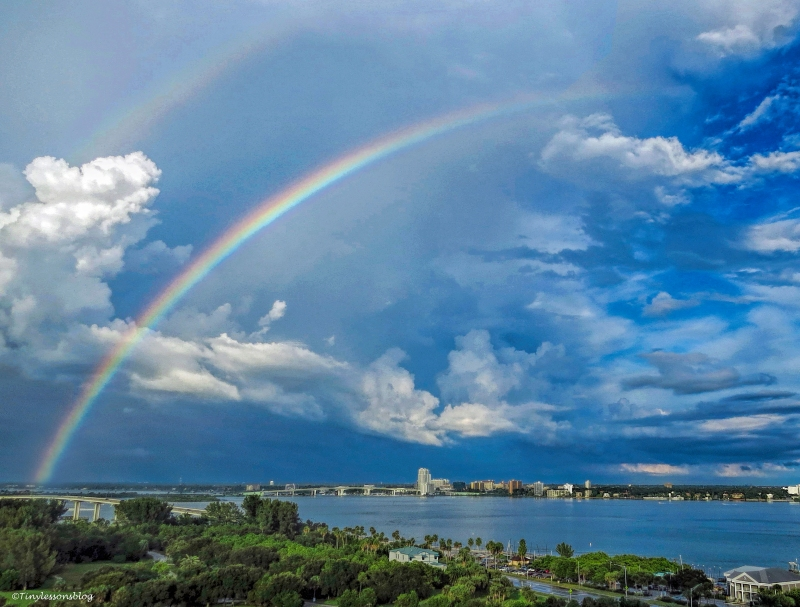 double rainbow ud25 b
