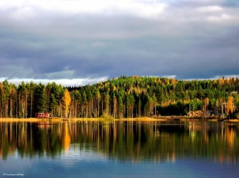 Lake in the fall hp