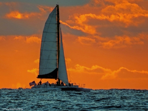 sunset sail ud26