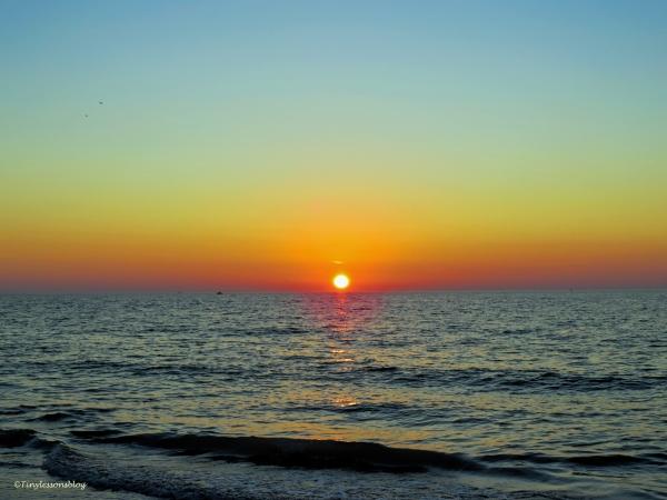 halloween sunset sand key
