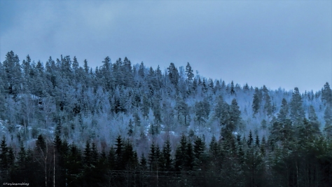 first snow on the montains in Finland