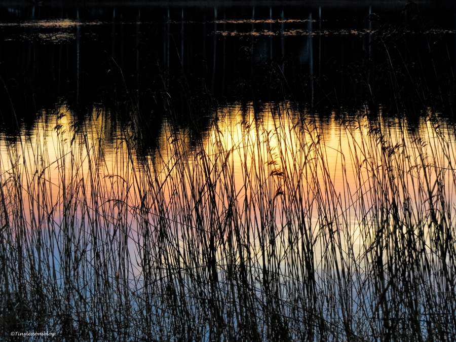 sunrise sky reflected FI