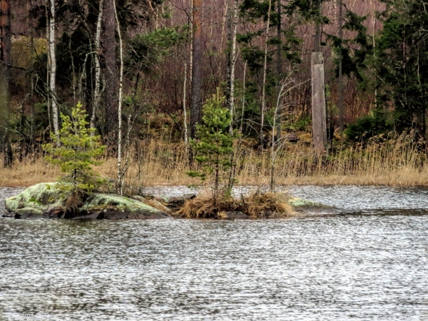 islet in a lake in Finland