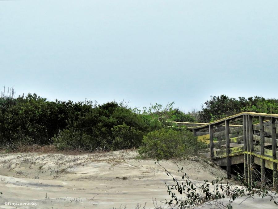 little Talbot Island board walk