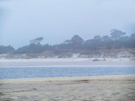 Little Talbot Island beach on a foggy winter morning