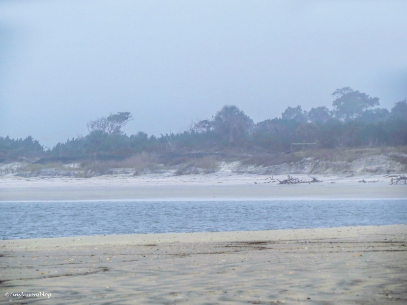 Little Talbot Island beach on a foggy winter morning