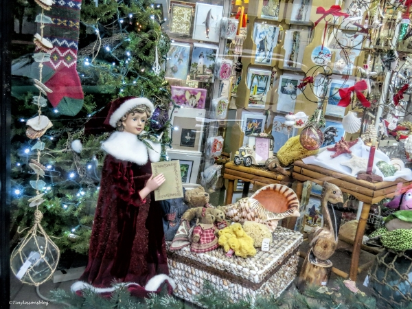 shop window Amelia Island