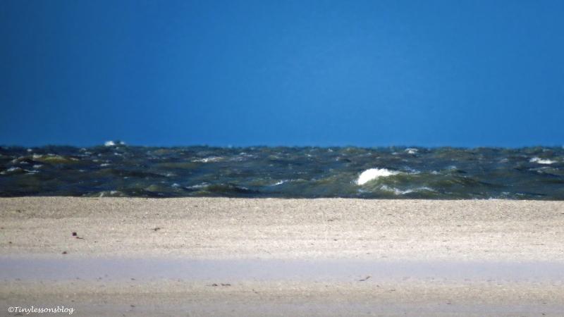 rough seas ud46