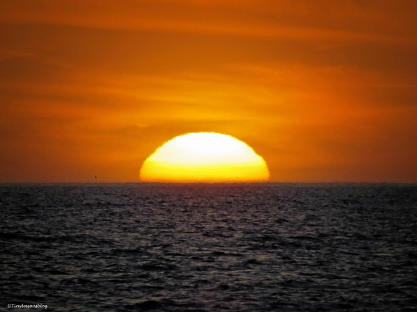 sunset 3 ud50