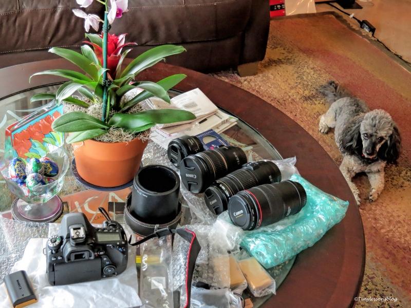 my new camera gear ud56