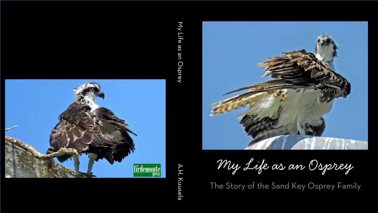 osprey book 2015 season