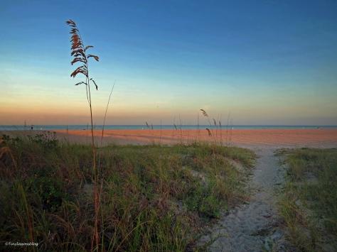 sunrise at the beach UD1