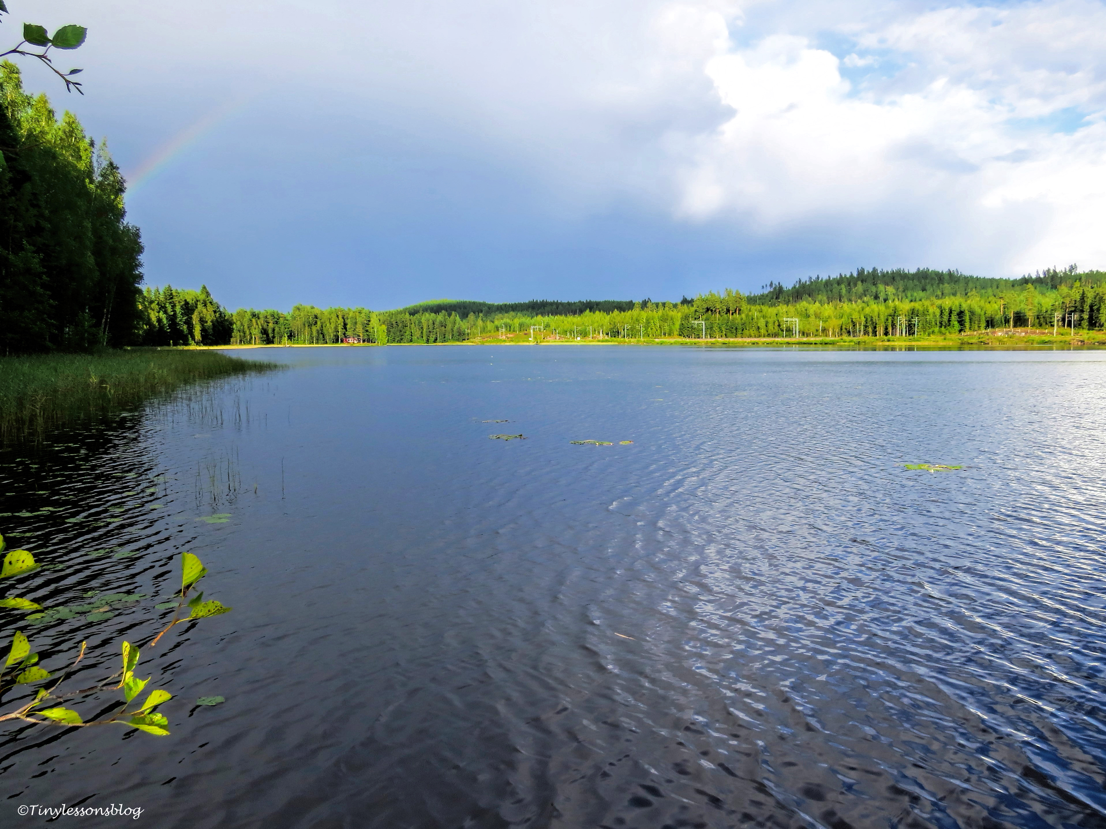 rainbow Finland Aug16 UD75