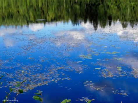 reflections on the lake Finland Aug16 UD75