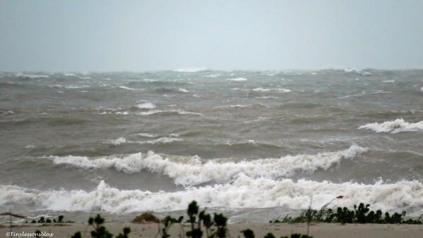 hermain on the ocean UD77